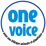 one-voice-bleu