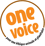 one-voice-orange